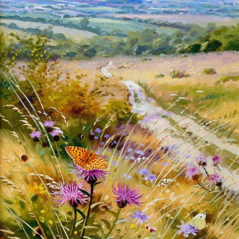 Chalk Downland Butterflies by Richard Tratt