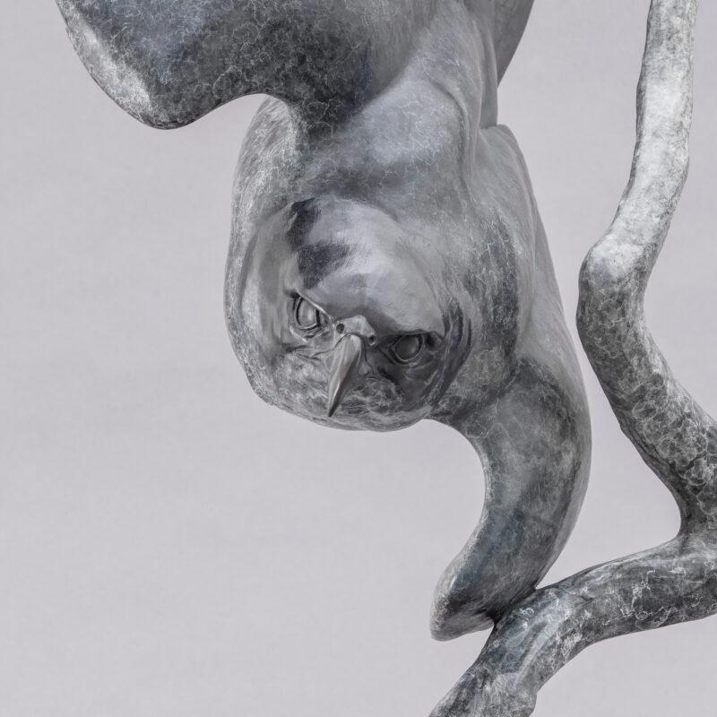 Peregrine (lightening bolt) by Nick Bibby