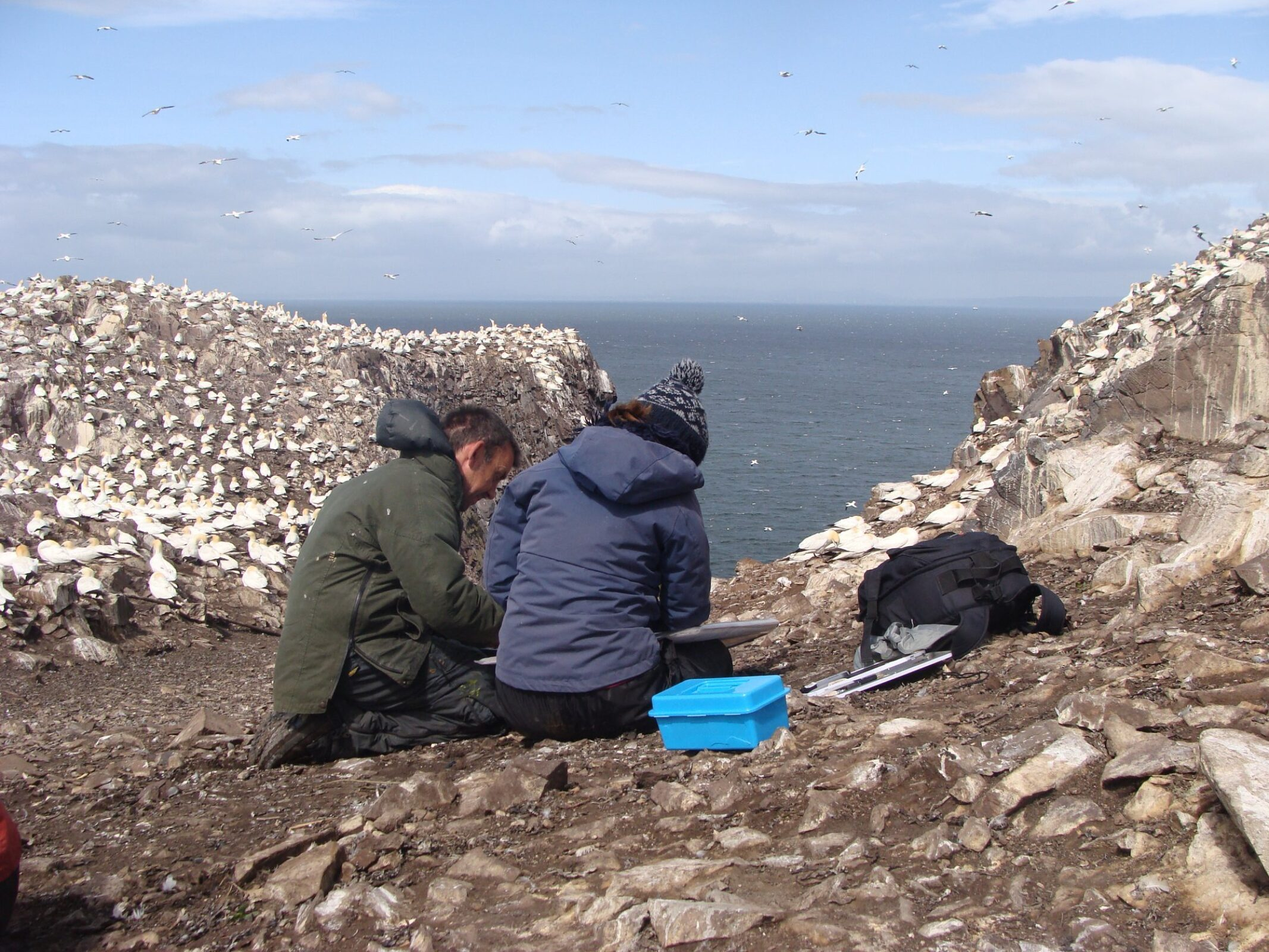 Amongst the Gannet colony on the Bass Rock. Getting some advice from a tutor.  © Adele Pound