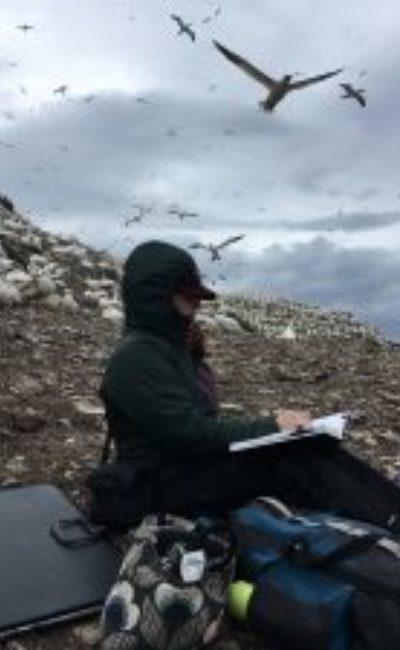 Emily Ingrey-Counter sketching on the Bass Rock