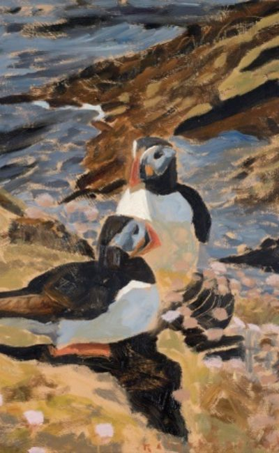 Puffin pair, oil on board, 24 x 24 cm Bob Greenhalf