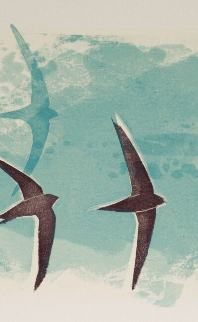 Summer Swifts by Jane Smith