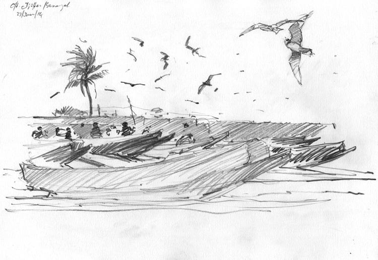 <p>Storm petrels, Bruce Pearson</p>